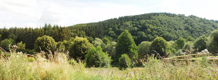 Eifel Hills by geralin