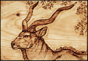 Bull Kudu Wood Burning by Gray-Ghost-Creations