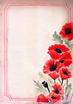 Poppies' blank by saysly