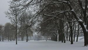 Snowy Park by UdoChristmann