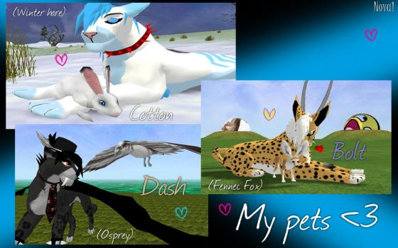 My pets (IW) by Wolf-fairi