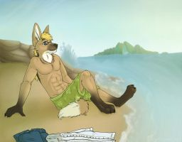 Relaxing Day at the Beach by NauroK