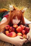 Spice and Wolf :Apples by Firss