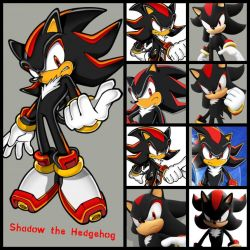 Shadow the Hedgehog Collage by chococookiepie