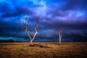 Storm Front by Questavia