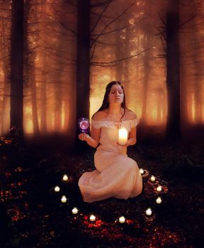 Magic in the Forest by pamelaanne