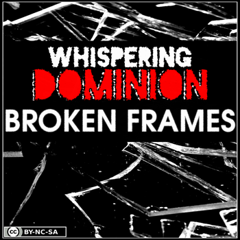 Broken Frames Album Cover by Tux-t-penguin