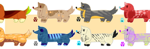 50 Point Dachshund Adopts by galactic-fire-adopts