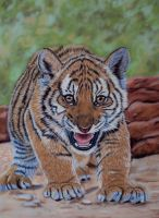 Hear my roar (soft pastels) by Sarahharas07