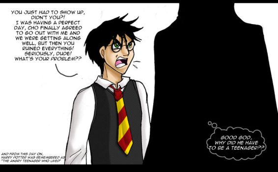 Harry Potter vs Voldemort by thanoodles