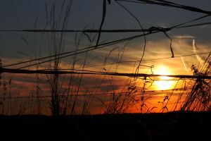 another sunset by Cridili