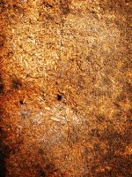 texture 2 by compot-stock