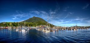 Sunny June evening in Ketchikan by Muskeg