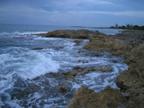 The Rocky Shore II by Dylactus
