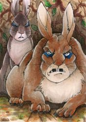 The General - Watership Down - ATC by Merinid-DE