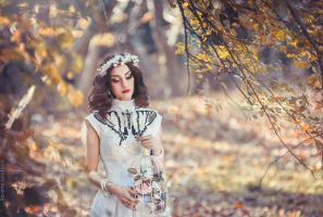 Autumn Breeze. Branch Project I by RavenaJuly