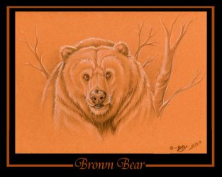 Brown Bear by tarkheki