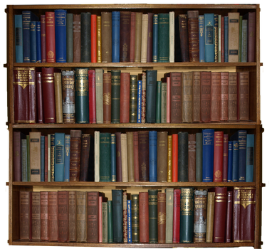 bookcase by marmaladepip