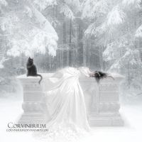 Cold As Snow by Corvinerium