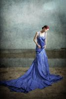 The Dress by ChrissieRed