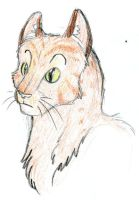Firestar by Qwiven