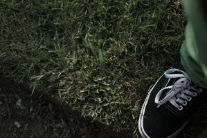 Vans And Grass by MorningMorning