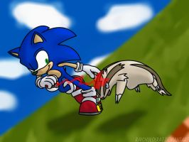 Sonic and Linoone