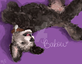 Babou by sugarspunquills