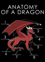Anatomy Of A Dragon (Draft) by artwork-tee