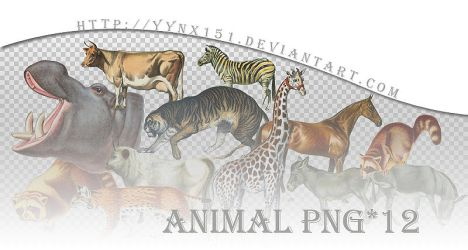 Animal png pack #04 by yynx151