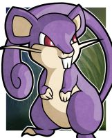 Rattata by WhyDesignStudios