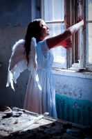 Angel by groundhog-day