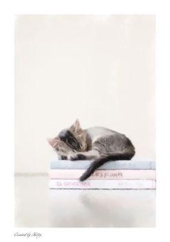 Cat on Books by KittySoftPaws934