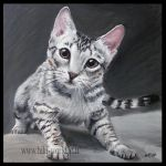 Ocicat Kitten by Hiki-Hiki