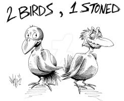 2 Birds.  1 Stoned. by OuthouseCartoons