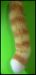 Striped tail commission by Radioactimals