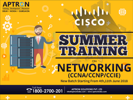 CCNA Summer Training in Delhi by devaryaaa