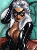 Black Cat Colorized by Rifferus