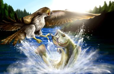 Hawk and the Fish by panaceanplague99