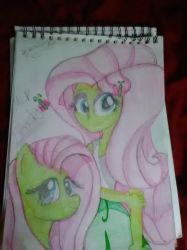 Fluttershy and Fluttershy pony by borisairay12