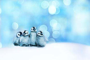 Little Penguins by ElyneNoir