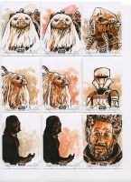 Star Wars Rogue One Series 2 - 04 by tdastick