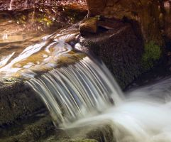 Holywell Fall by grifasp