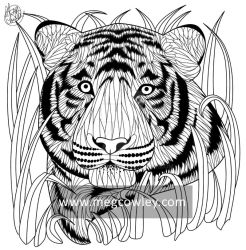 Sumatran Tiger (The Exotic Colouring Book) by megcowley