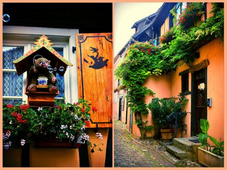 Alsace by Tailspoissonchat