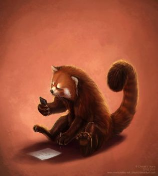 red panda and math by blayrd