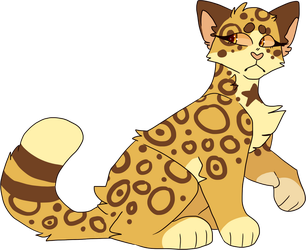 6. Leopardstar by chillycactus
