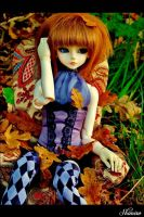 L'automne ~ by Shimiro
