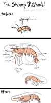 Shrimp Method: How to draw anything (process) by Calbury