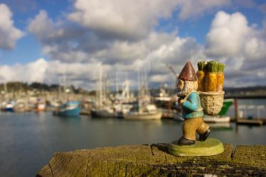 Harbor Gnome by thedustyphoenix